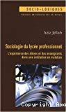 Sociologie du lycée professionnel : l'expérience des élèves et des enseignants dans une institution en mutation.