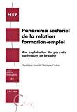 Panorama sectoriel de la relation formation-emploi : une exploitation des portraits statistiques de branche.