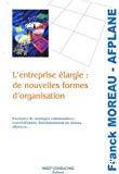 L'entreprise élargie : de nouvelles formes d'organisation. Exemples de stratégies collaboratives : externalisation, fonctionnement en réseau, alliances....