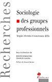 Sociologie des groupes professionnels. Acquis récents et nouveaux défis