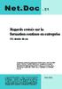netdoc21_2.pdf - application/pdf
