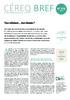 Bref_378-web.pdf - application/pdf