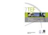 TEF2020.pdf - application/pdf