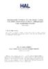 Hal-2020-tapuscrit_Marty_Peter_Lang.pdf - application/pdf